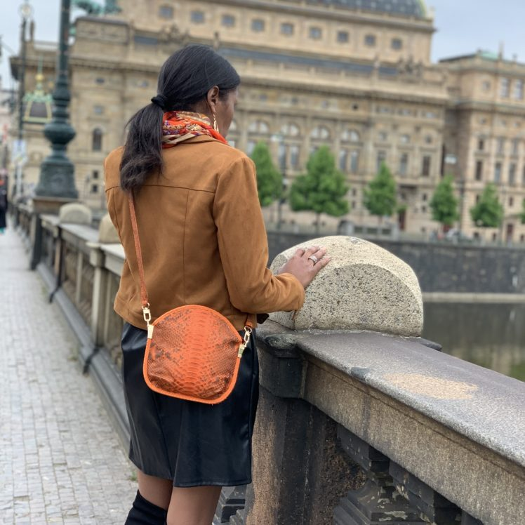 Sarah Li Envie clutch bag